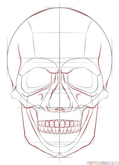 How Draw Human Skull Step Drawing Tutorials