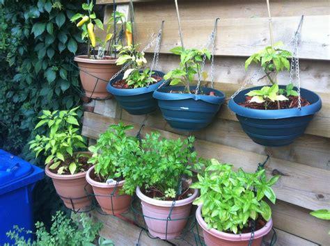 Hanging Vegetable Garden by 10 Creative Vegetable Garden Ideas