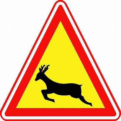 Crossing Svg Sign Traffic Animals Korean Wild