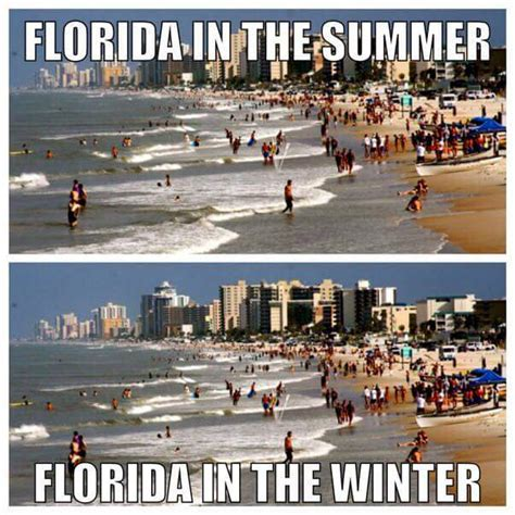 Florida Winter Meme - the 10 best florida winter memes i love south florida