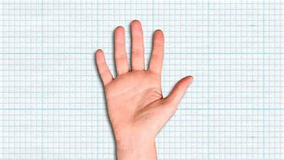 Fingers Count Finger Counting Animation Five Gifs