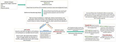 flow chart depicting  algorithm    drug regimen
