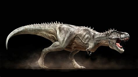 killer dinosaurier  tyrannosaurus rex doku