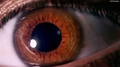Eyes Brown Skin Gifs Animated Bts Lyrics