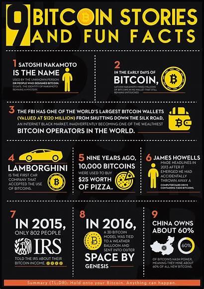 Facts Fun Bitcoin Infographic Stories Albert