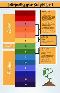 Mainland Aggregates Blog - Getting to Know Your Garden Soil  Ph