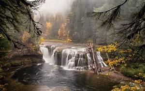 Forest Waterfall River Wood wallpapers