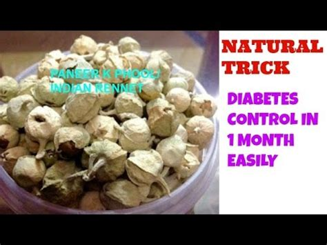 Kill Diabetes Forever In Just 1 Month Easy And Faster Home