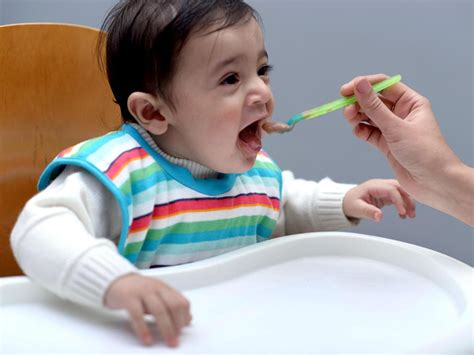 The Complete Meal Plan For Your 9 Month Old Baby