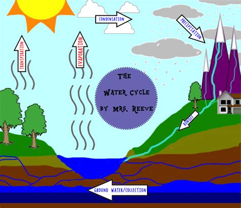 The Water Cycle Diagram Pdf by Water Cycle Mrs Reeve S 5th Grade Class