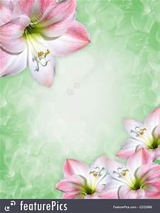 Invitation Words Amaryllis Pink Flowers Border Illustration