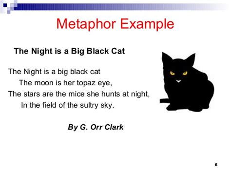 The Black Cat Essay Custom Admission Essay Writers Service For