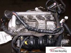 2001 Toyota Echo Engine Wire Harness
