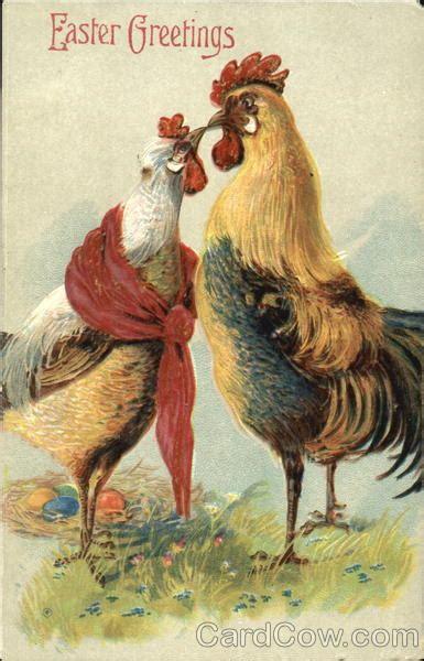 kissing chickens  chicks