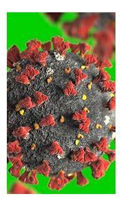Coronavirus Wallpapers (41+ images)