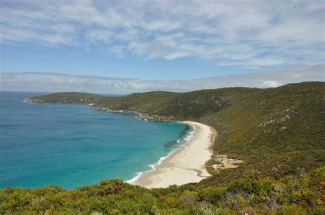 shelley beach  albany
