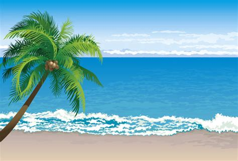 Tropical Beach Clipart Free Vector Download (4,197 Free