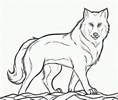 Wolf Template Coloring Printable Templates Animal Shape