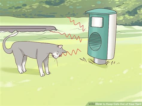 Keep Cats In Backyard by 3 Ways To Keep Cats Out Of Your Yard Wikihow