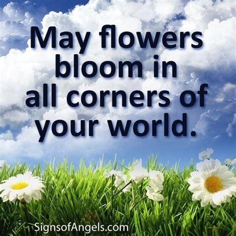 quotes   flowers quotesgram