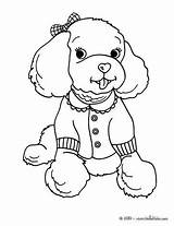 Coloring Pages Dog Poodle Printable Adult Toy Poodles sketch template