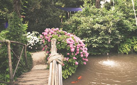 Botanischer Garten Nähe Gardasee by Feriendorf Am Gardasee Und Der Botanische Garten Andre Heller