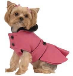 Hot Pink Peplum Dog Coat with Black Velvet Collar