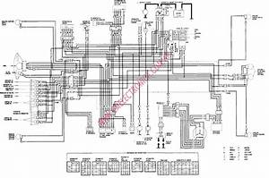 Wiring Diagram For Gsxr 750  Wiring  Free Engine Image For User Manual Download