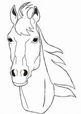 Horse Face Drawing Coloring Head Pages Horses Benscoloringpages Template Facing Draw Drawings Faces Heads Printable Colouring Sketch Coloringpages Cartoon Sheets sketch template
