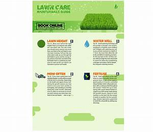 Your Ultimate Guide To Lawn Care