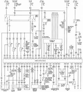 Repair Guides Wiring Diagrams Autozone Com With Honda