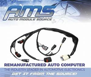 2001 2002 2003 New Engine Injector Harness Dodge Chrysler