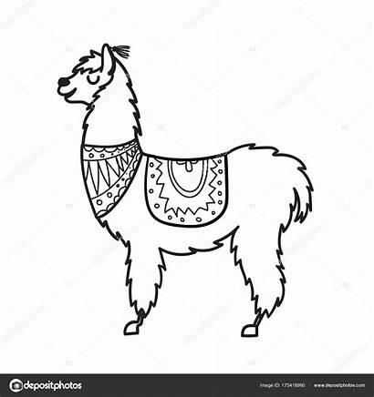 Alpaca Drawing Illustration Vector Llama Lama Cartoon