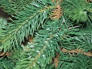 Künstlicher Tannenbaum Wie Echt : welcher baum zu weihnachten folienschnitt oder spritzgussverfahren ~ Eleganceandgraceweddings.com Haus und Dekorationen