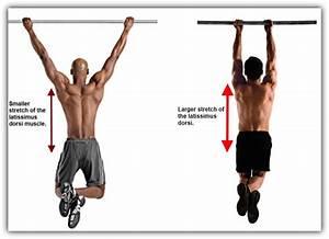 Trazioni  Prese  Muscoli E Leggende Da Palestra