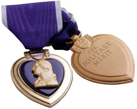Purple Heart Car Donation Review  Government Grants News. Business Loans With Bad Credit History. Carpet Cleaning San Leandro Cfl Bulbs India. Central Coast Orthopedics Wku Online Classes. Beach Church Myrtle Beach Sc. Garage Door Repair Connecticut. Surgical Tech Schools In Illinois. Do Android Phones Need Antivirus. Direct Tv Official Website Best Mortgage Crm