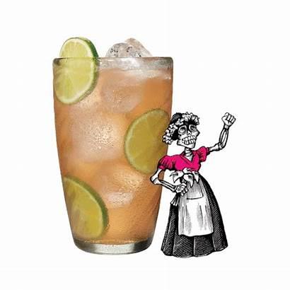 Tequila Drink Paloma Espolon Rules Want Aolcdn