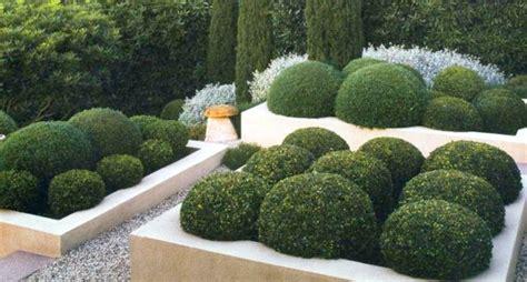 arbuste de decoration exterieure 38 id 233 es originales de d 233 coration jardin ext 233 rieur zapping web