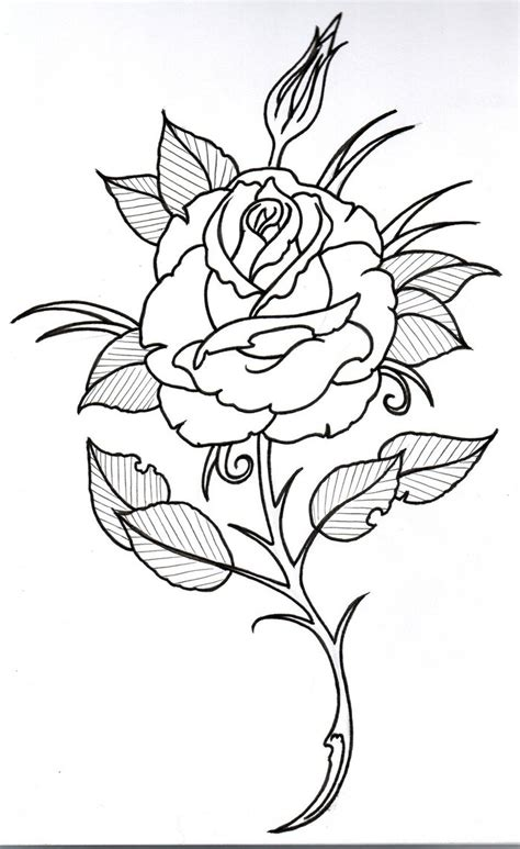 rose drawing outline   clip art