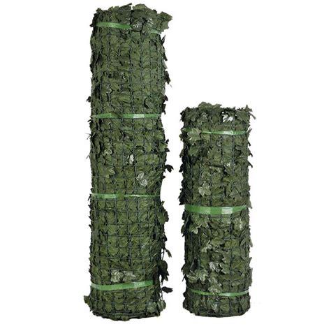Siepe Verdecor a foglie tipo edera Siepi Verdemax
