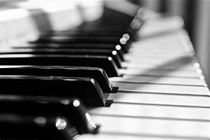 Musical Instrument Themed Photography - Stockvault.net Blog