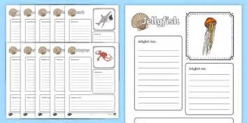 Sea Creatures for Kids Factfile Worksheets | Primary Science