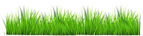 grass clipart free grass border clipart png