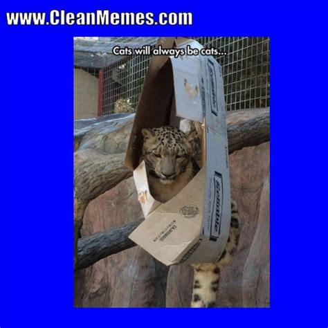 Popular Memes 2018 - clean memes 01 02 2018 clean memes the best the most online