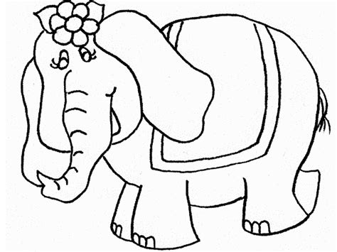 elephant coloring pages  kids printable