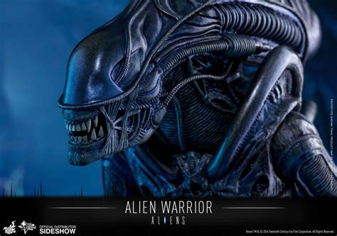 Independence Day Resurgence Wallpaper Aliens Alien Warrior Sixth Scale Figure By Hot Toys Sideshow Collectibles