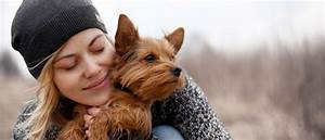 can emotional support animal certification online
