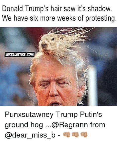 Donald Trump Hair Memes - 25 best memes about trump hair trump hair memes