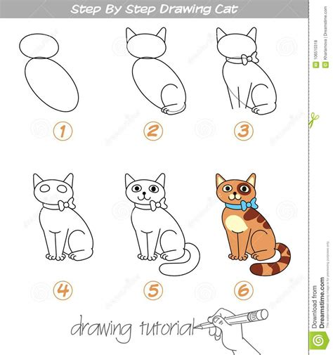 step  step drawing cat stock vector illustration