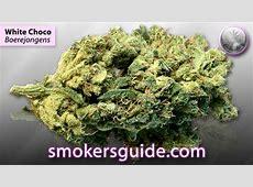White Choco Marijuana Purchased from Boerejongens
